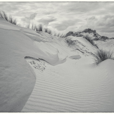 Sand dune patterns, South Texel